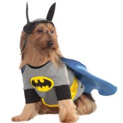 costume de batman pour chien